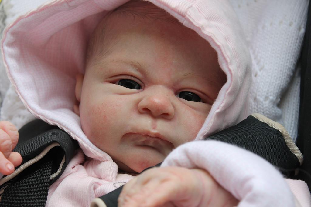 Beautiful Reborn Newborn Baby Girl Doll 'Seraphina' Sculpted by Elisa Marx